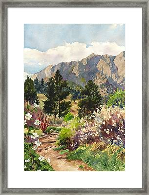 April Hike Framed Print by Anne Gifford