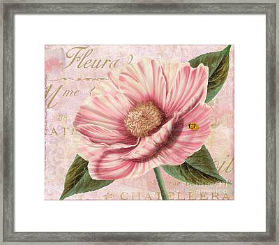 April Striped Peony Framed Print by Mindy Sommers