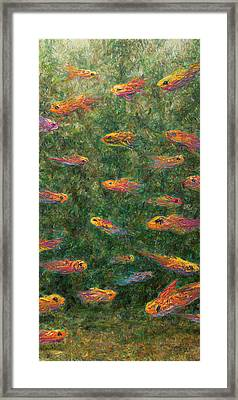 Aquarium Framed Print by James W Johnson