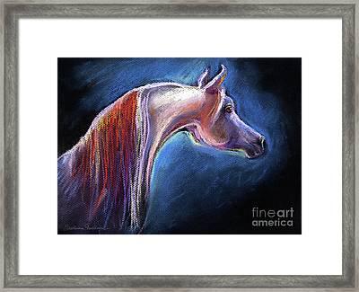 Arabian Horse Equine Painting Framed Print by Svetlana Novikova