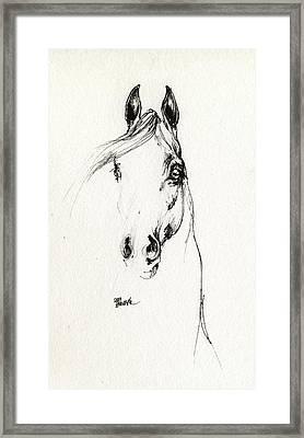 Arabian Horse Sketch 2014 05 29d Framed Print by Angel  Tarantella