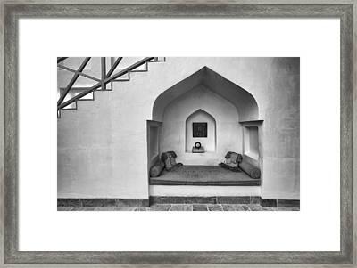 Arabian Retreat Framed Print by John Grummitt