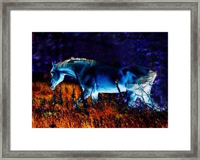 Arabian Stallion Framed Print by ELA-EquusArt