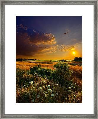 Aridity Framed Print by Phil Koch