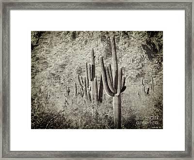 Arizona Desert 2 Framed Print by Methune Hively