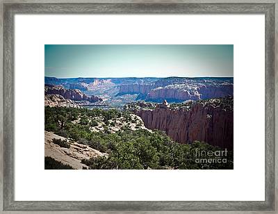 Arizona Desert Landscape Framed Print by Ryan Kelly