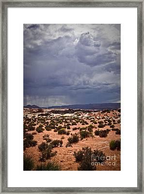 Arizona Rainy Desert Landscape Framed Print by Ryan Kelly