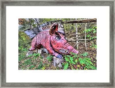 Arkansas Razorbacks Framed Print by JC Findley