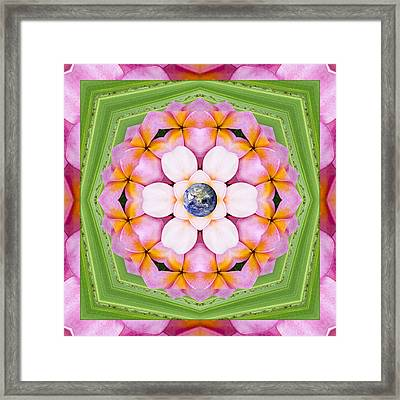 Aroma Rouge Framed Print by Bell And Todd