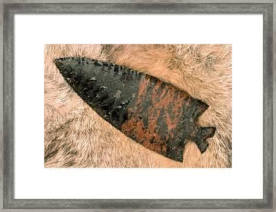 Arrow Point Framed Print by Carol Leigh
