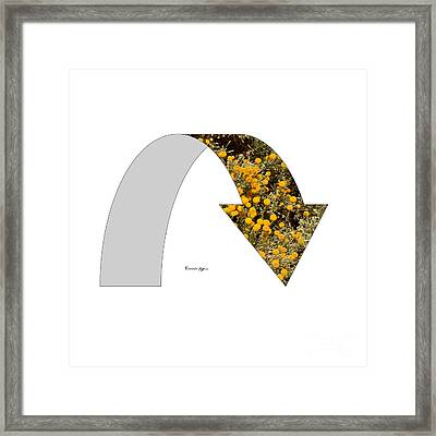 Arrow With Flowers Framed Print by Riccardo Maffioli