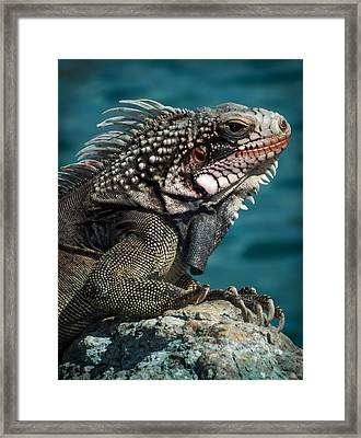 Art Of The Ages Framed Print by Karen Wiles
