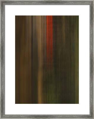 Arterial Mishap Framed Print by Skip Willits