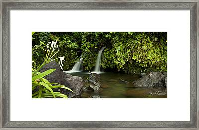Artisan Falls II Framed Print by Sun Gallery Photography Lewis Carlyle