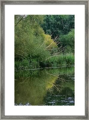 Artistic Reflection September 2015 Framed Print by Leif Sohlman