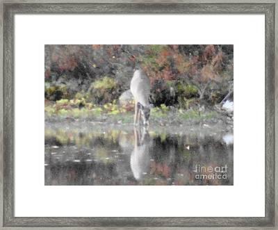 As The Deer IIi Framed Print by Daniel Henning