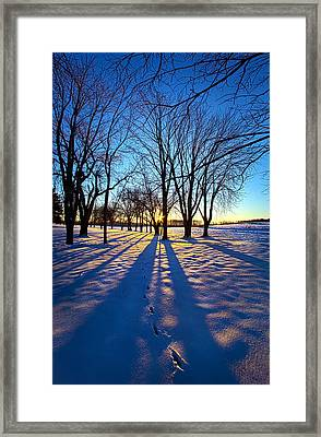 As The Sun Misses The Flower In The Depths Of Winter Framed Print by Phil Koch