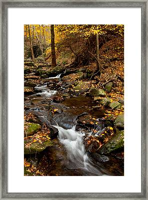 As The Water Runs Framed Print by Karol Livote