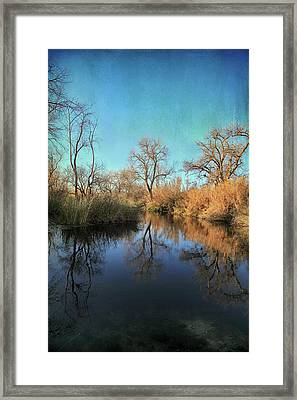 As We Taked About The Year Framed Print by Laurie Search