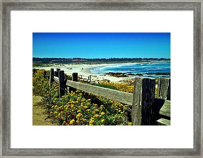 Asilomar In Bloom Framed Print by Joyce Dickens