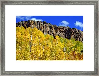 Aspen Glory Framed Print by Marty Koch