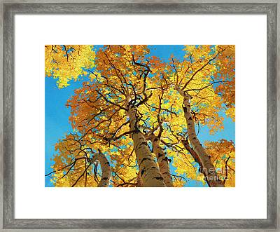 Aspen Sky High 2 Framed Print by Gary Kim