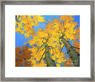 Aspen Sky High  Framed Print by Gary Kim