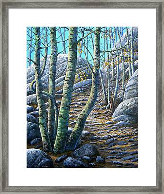 Aspen Trail Framed Print by Frank Wilson