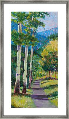 Aspen Trails Framed Print by Billie Colson