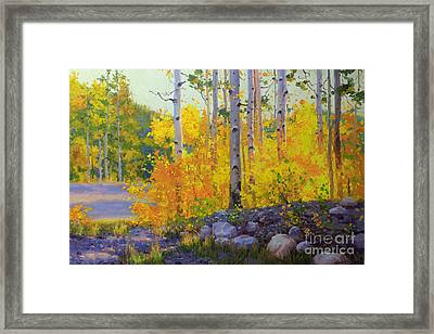 Aspen Vista Framed Print by Gary Kim