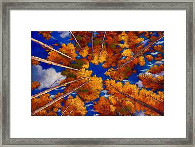 Aspen Vortex Framed Print by Johnathan Harris