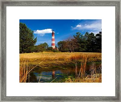 Assateague Lighthouse Reflection Framed Print by Nick Zelinsky