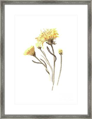 Aster Yellow Flower Abstract Art Print, Asters Watercolor Painting, Floral Minimalist Wall Decor Framed Print by Joanna Szmerdt