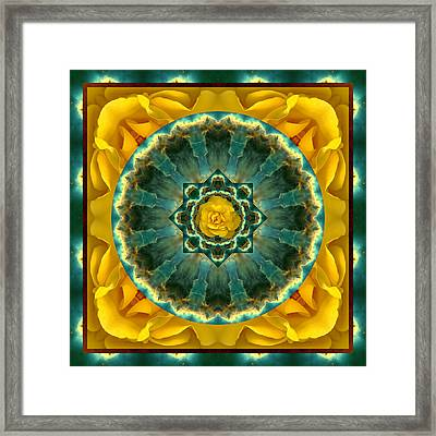 Astral Rose Framed Print by Bell And Todd
