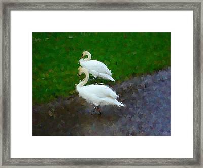 Asymmetry Framed Print by Roberto Alamino