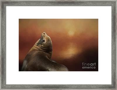 At Sunset Framed Print by Eva Lechner
