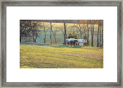 At The End Of The Day Framed Print by Jan Amiss Photography