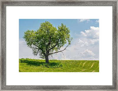 Atop The Hill Framed Print by Derrick Scofield