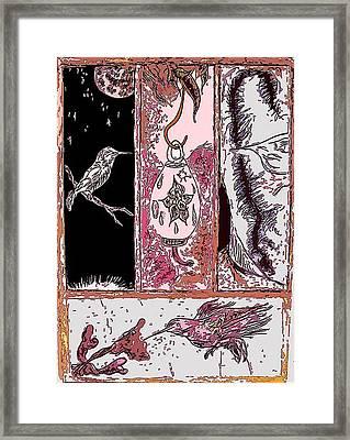 Attracting The Hummingbird Framed Print by Steve  Minton