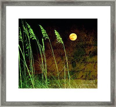 Au Claire De La Lune Framed Print by Susanne Van Hulst