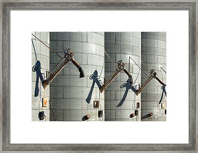 Augers Waiting Framed Print by Todd Klassy