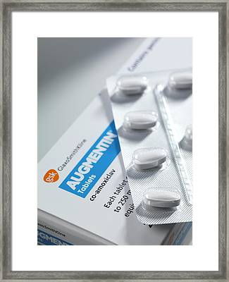 Augmentin Antibiotic Pills Framed Print by Tek Image