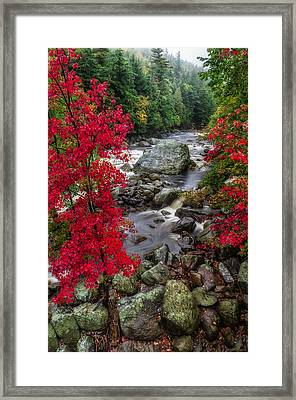 Ausable River Framed Print by Mark Papke