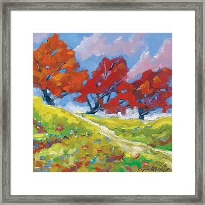 Automn Trees Framed Print by Richard T Pranke