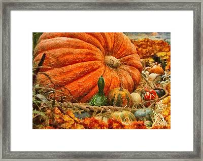 Autumn - Pumpkin - Great Gourds Framed Print by Mike Savad