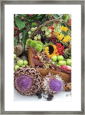 Autumn Abundance Framed Print by Tim Gainey