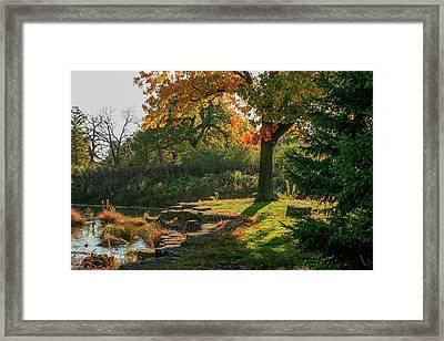 Autumn Along Deer Creek In Forest Park Framed Print by Garry McMichael