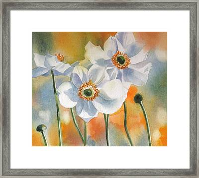 Autumn Anemone Framed Print by Alfred Ng