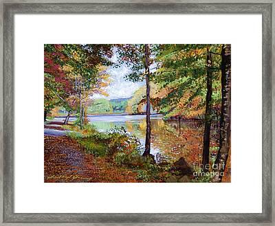 Autumn At Rockefeller Park  Framed Print by David Lloyd Glover