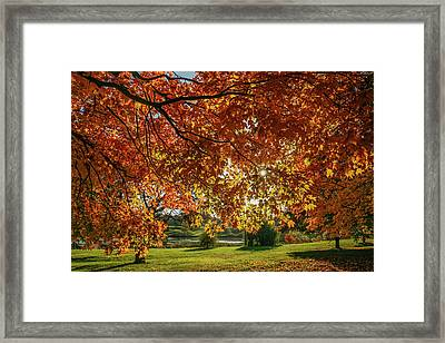 Autumn At The In Forest Park St Louis Missouri Framed Print by Garry McMichael